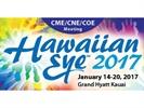 Hawaiian Eye 2017