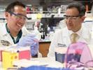 Washington U Researchers Identify Potential Treatment for Retinal Disorders