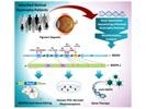 Researchers Identify Gene Mutation Associated with Retinitis Pigmentosa