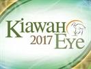 Kiawah Eye 2017