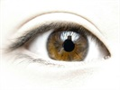 Optovue Receives FDA Clearance for Corneal Epithelial Thickness Mapping