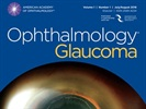 AAO Has Launched a New Journal Dedicated to Glaucoma Research